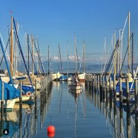 Marina - Arrival - Reflection - Blue