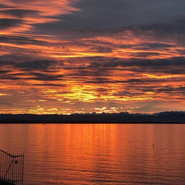 Early Lake Orange