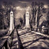 Bridge and Trees