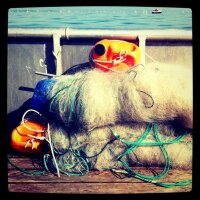 Fishers Net #lakeconstance